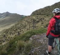 Beautiful Colombia at 4000m