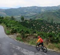 Johnboy descends into the Colombian coffee region