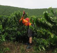 Johnboy diving in to the Colombian coffee region