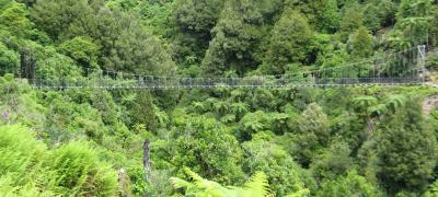 New Zealand Cycle Tours