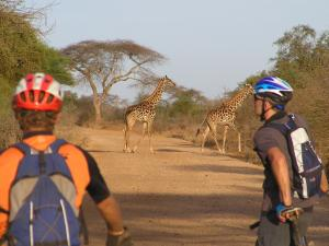 10 Week Training Program for Kenya and Tanzania Cycle Tour