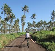 Just freewheeling it in Fiji
