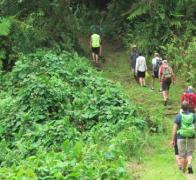 Taking a walk to the waterfall. Lavena Fiji