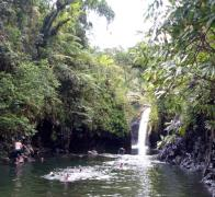 On tour in Fiji with steamy walks and refreshing waterfalls
