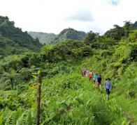 Taking a walk to the waterfall from Lavena Village