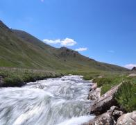 1Beautiful clear streams and wildflowers in Kyrgyzstan2