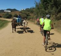 Giving way to the morning traffic. Cycle touring in Madagascar