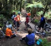 Rest stops are for refueling and socialsing On the gorgeous Timber Trail